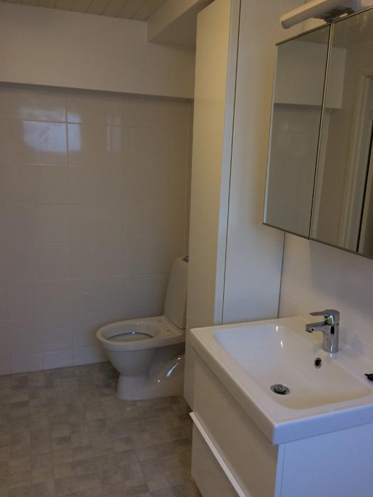 Reparation av badrum 2016 (23)